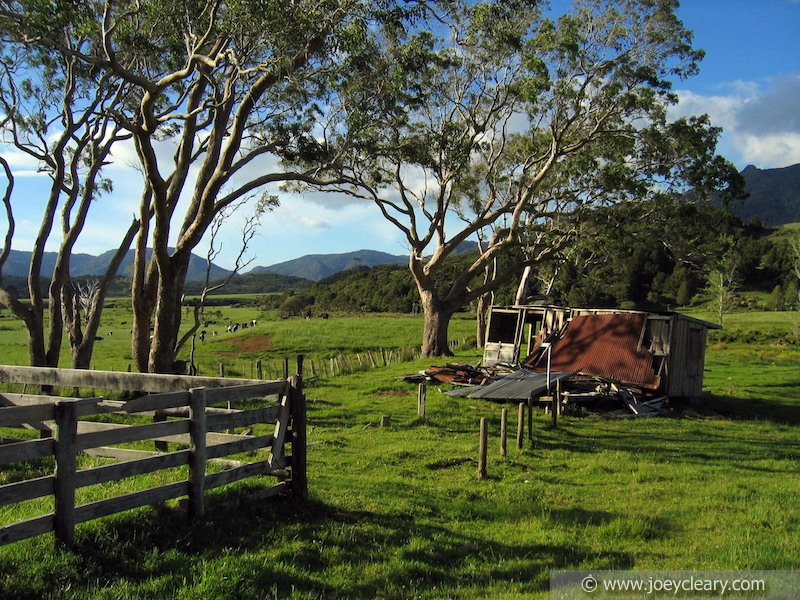 Abandoned Shack, Far North, New Zealand