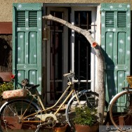 Bicycles - Provence, 2011