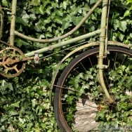 Green Bike, Dublin 2011